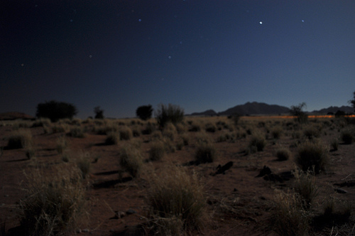 Namib desert at night from our porch